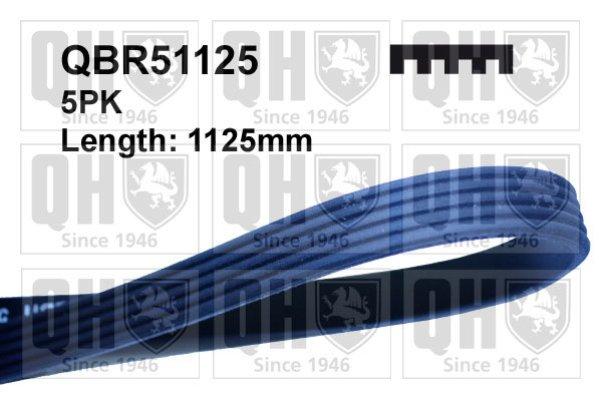 QH, QBR51125, Ремiнь клиновий